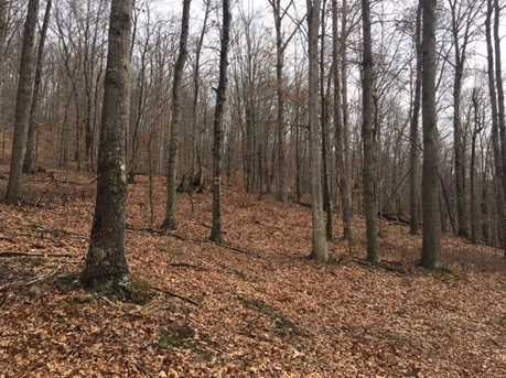 0 Mineral Springs Road - Photo 2