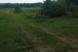 2684 New Harmony Shiloh Road - Photo 1