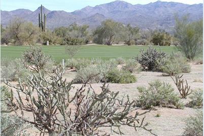 28009 N Desierto Drive - Photo 1