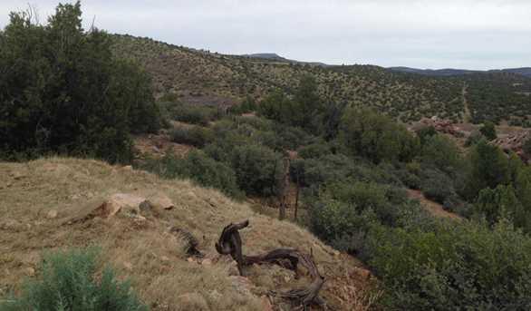 17751 E Black Bear Trail - Photo 4