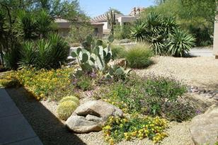 7113 E Canyon Wren Circle - Photo 1