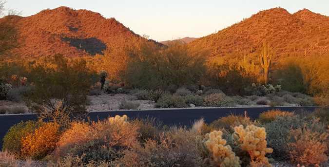 5301 E Prickly Pear Road - Photo 1