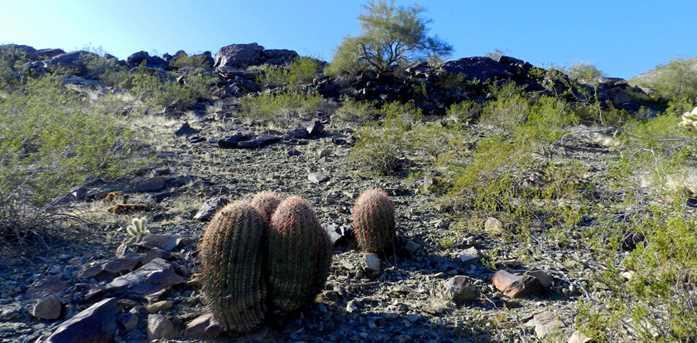 14406 S Presario Trail - Photo 20