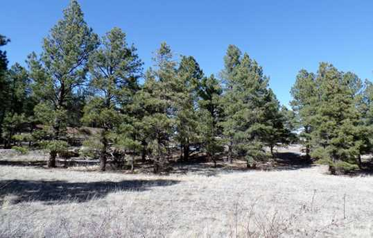 Lot 13 Red Cabin Ranch Estates - Photo 4