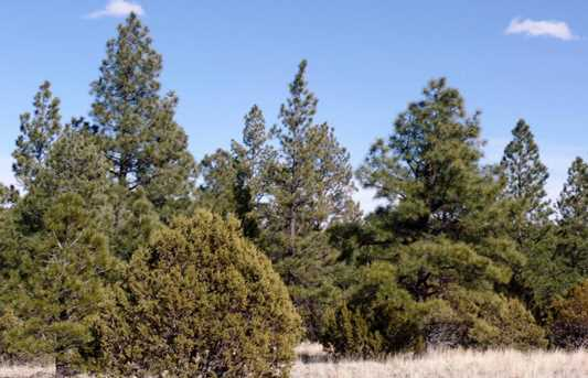 Lot 14 Red Cabin Ranch Estates - Photo 2