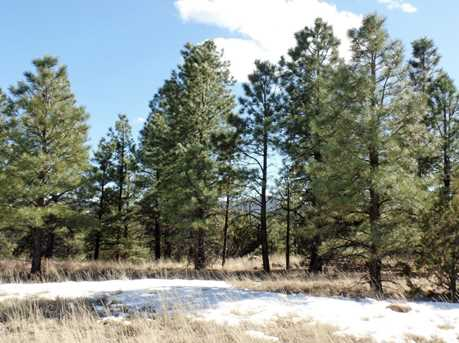 Lot 16 Red Cabin Ranch Estates - Photo 2