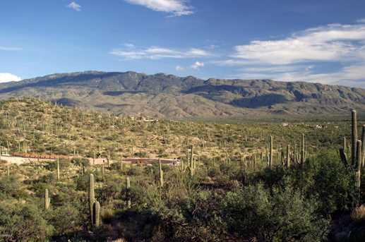 3061 N Placita De Nazca - Photo 4