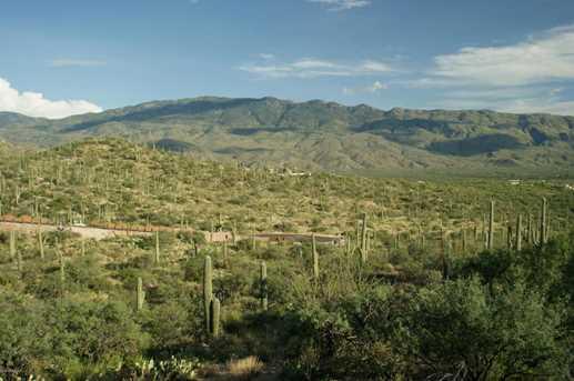 3061 N Placita De Nazca - Photo 1
