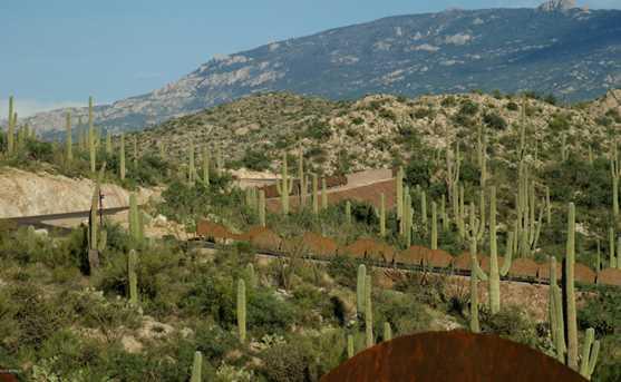 3061 N Placita De Nazca - Photo 24