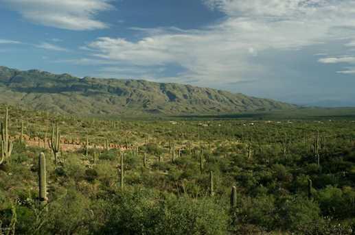 3061 N Placita De Nazca - Photo 12