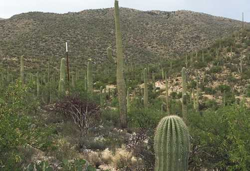 3061 N Placita De Nazca - Photo 38