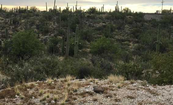 3061 N Placita De Nazca - Photo 42