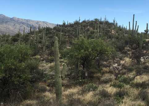 3061 N Placita De Nazca - Photo 36