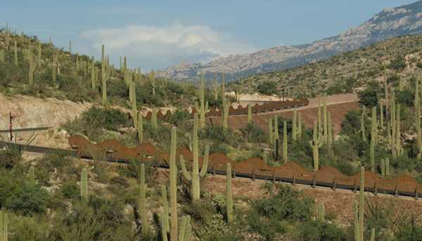 3061 N Placita De Nazca - Photo 10
