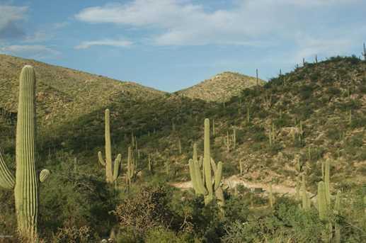 3061 N Placita De Nazca - Photo 16