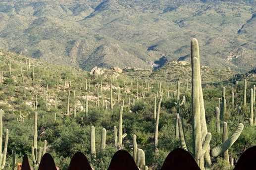 3061 N Placita De Nazca - Photo 28