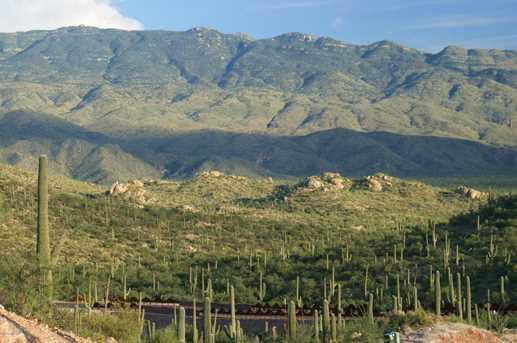 3061 N Placita De Nazca - Photo 30
