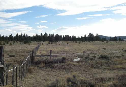 15 Acre E Mountain Man Trail - Photo 6