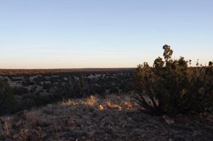 5959 Dark Canyon Drive - Photo 1