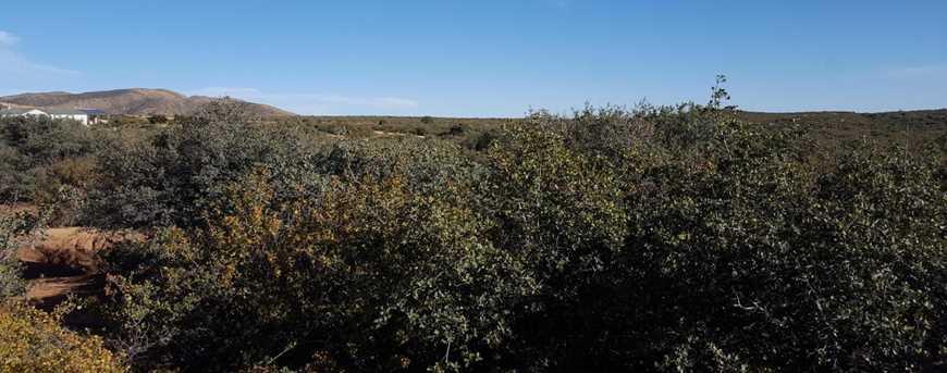 1545 N Sitting Bull Drive - Photo 2
