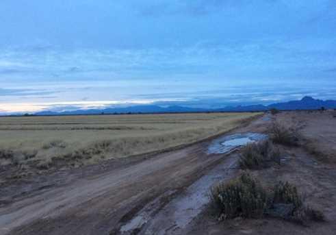 520 W Centennial Road - Photo 14