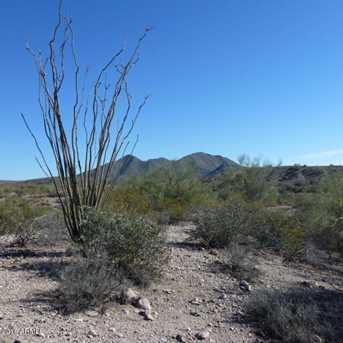 13Xxx N Blue Coyote Trail - Photo 12