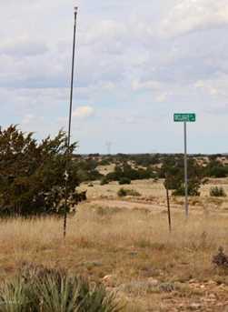 Lot 711 Chevelon Canyon Ranch Ranch - Photo 4
