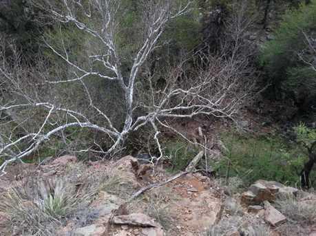 13 W Elk Song Trail - Photo 2