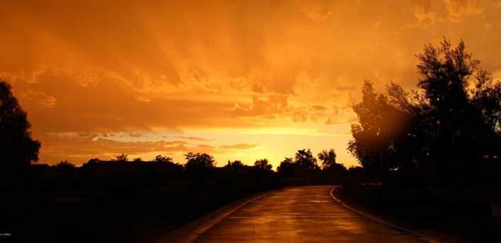 23011 N Las Positas Drive - Photo 76