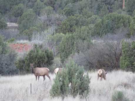 5 Spirit Pony Trail - Photo 40