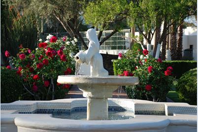 5101 N Casa Blanca Drive #12 - Photo 1