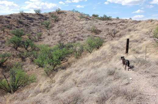 Grey Hawk Trail #1 - Photo 30