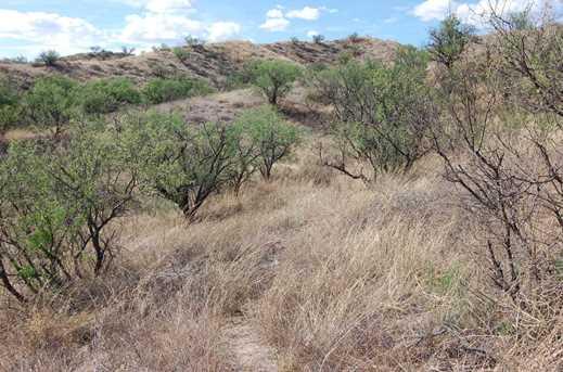 Grey Hawk Trail #1 - Photo 1