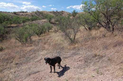 Grey Hawk Trail #1 - Photo 16