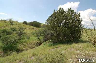 3 Juniper Berry Trail #3 - Photo 12