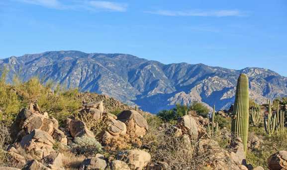 1190 Tortolita Mountain Circle #197 - Photo 2