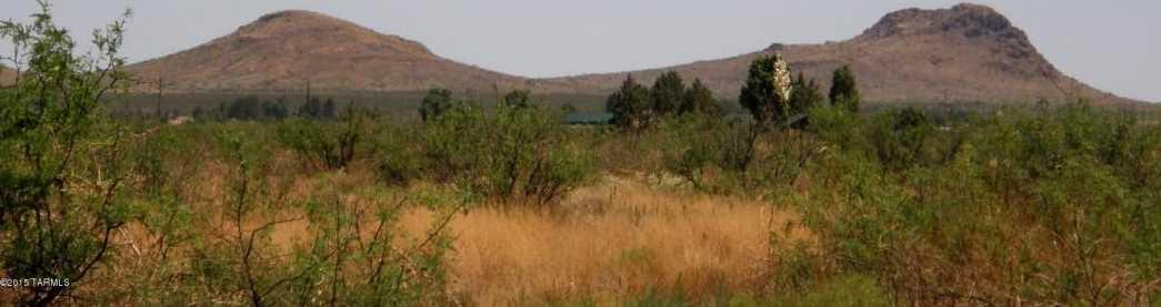 40 + Acres Mule Deer Road #14 - Photo 8