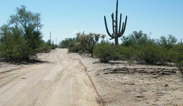 Xx Jacinto Drive #002D - Photo 18