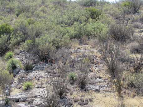 Tbd 120Ac Lots 10 11 12 Red Mountain Rd #10 - Photo 2