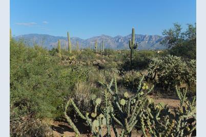Gecko Canyon Trail #0 - Photo 1