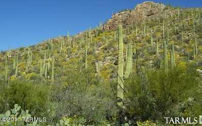 7459 Secret Canyon Drive #43 - Photo 2