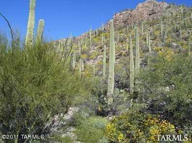 7459 Secret Canyon Drive #43 - Photo 1