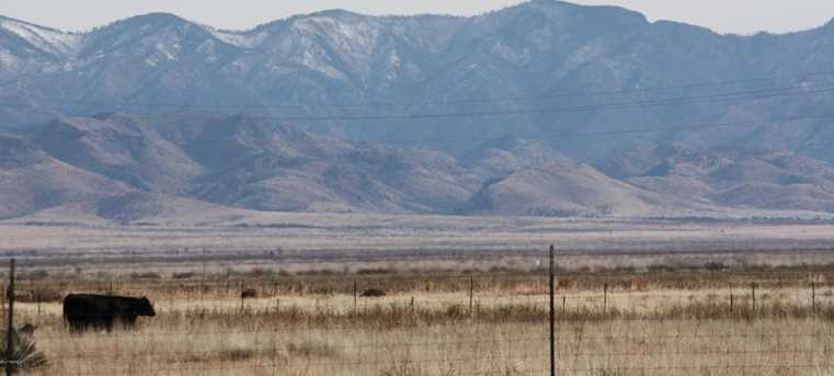 Parker Ranch Rd -20 Acres - Photo 2