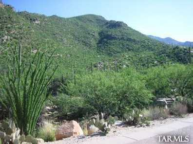 7501 Secret Canyon Drive #0 - Photo 4