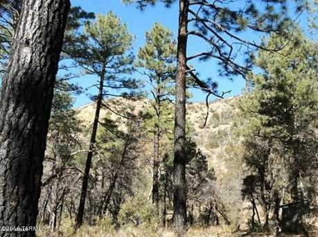 13223 Turkey Creek (Cabin 4) - Photo 6