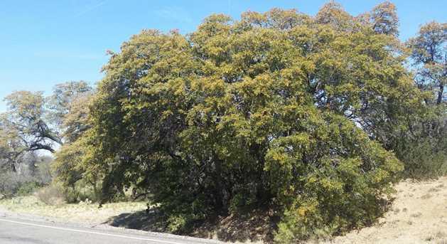 Crn Mt Lemmon Hwy/White Oak Pl #0 - Photo 6