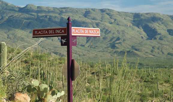 3060 Placita De Nazca - Photo 10