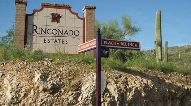 3051 Placita De Nazca - Photo 18