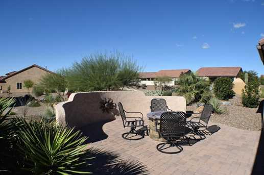 32414 S Desert Pupfish Drive - Photo 24