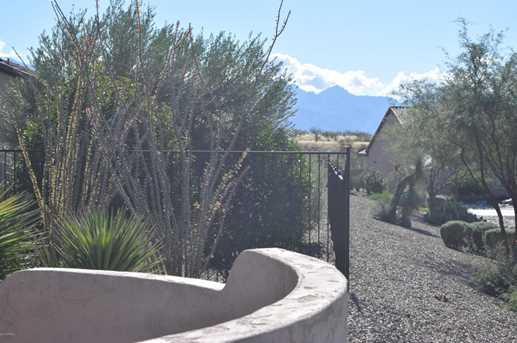 32414 S Desert Pupfish Drive - Photo 26